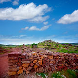 Masonry stonewall in spring with flowers at Menorca Stock Photography