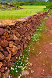 Masonry stonewall in spring with flowers Menorca Stock Photos