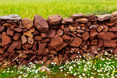 Masonry stonewall in spring with flowers Menorca Stock Image