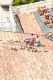 Masons to work on the roof for laying tiles Stock Photography