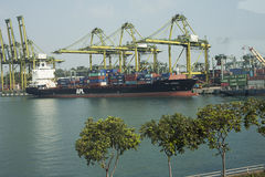 Masowego ładunku statek pod portowym żurawia mostem, Odessa, Ukraina Zdjęcie Stock