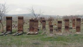 masowy grób pod drzewem zdjęcie wideo