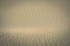 Maspalomas沙丘自然储备的沙子纹理视图,在大加那利岛,加那利群岛,西班牙 免版税图库摄影