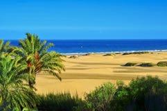 Maspalomas沙丘自然储备,在大加那利岛,西班牙 免版税库存照片