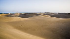Maspalomas,大加那利岛海岛,西班牙自然公园和沙丘  库存照片
