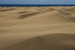 Maspalomas Royalty Free Stock Photo