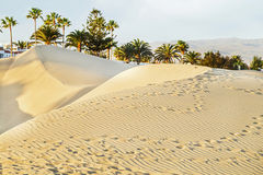 Maspalomas beach with sandy dunes. Gran Canaria, Canary islands, Spain. Copy space. Royalty Free Stock Image