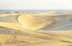 Maspalomas beach with sandy dunes. Gran Canaria, Canary islands,  Spain. Copy space. Stock Photos