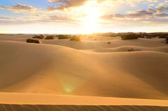 Maspalomas desert Stock Photography