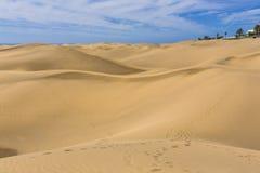 Maspalomas Duna - desertera i kanariefågelön Gran Canaria Arkivfoton