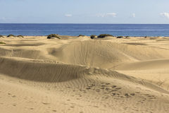 Maspalomas Dunas strand, Gran Canaria Arkivbilder