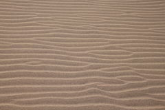 Maspalomas Dunes. A beach sand on Maspalomas Dunes Royalty Free Stock Photos