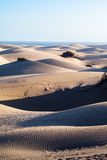 Maspalomas Dunes, Gran Canaria. Canary Islands, Spain - photographed at sunset Royalty Free Stock Photography