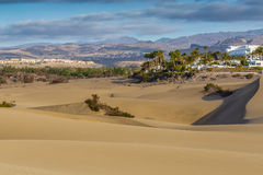 Maspalomas Dunes-Gran Canaria,Canary Islands,Spain. Palms And Buildings In Maspalomas Sand Dunes With Mountain In The Background - Maspalomas, Gran Canaria royalty free stock photography