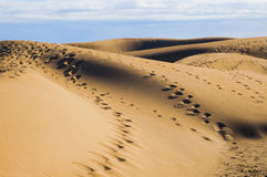Maspalomas dunes in Gran Canaria Royalty Free Stock Images