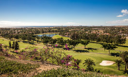Maspalomas and golf park Royalty Free Stock Photos