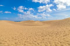 Maspalomas Las Dunas EL-Oase, natürliche Sanddüne-Reserve in Gra stockbilder