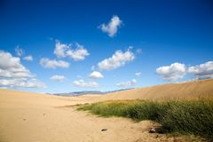 Maspalomas sand dunes Royalty Free Stock Photos