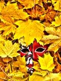 Masque 1 Images libres de droits