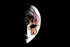 masque d'isolement par carnaval Photos stock