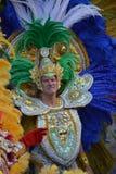 Masque dans le carnaval à Berlin photographie stock