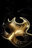 masque de carnaval fleuri photo stock