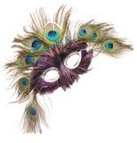 Masque de mardi gras image libre de droits