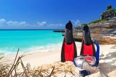 Masque et ailerons naviguants au schnorchel sur la plage Photo stock