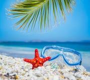 Masque et palmier par la mer Images stock