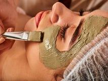Masque facial de boue de femme dans le salon de station thermale Massage de visage photos libres de droits