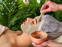 Masque facial de boue de femme dans le salon de station thermale Procédure de visage image libre de droits