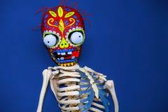 Masque squelettique coloré sur un fond bleu Image libre de droits