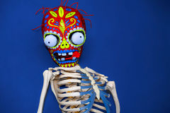 Masque squelettique coloré sur un fond bleu Photographie stock libre de droits