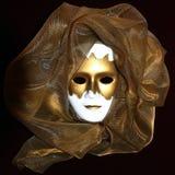 Masque veneziano Fotografia Stock