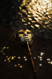 Masquerade. Venetian Mask by the River