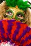 masquerade Стоковые Фото