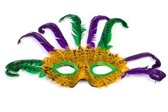 Masquerade Mask. A feather masquerade mask, isolated against a white background Stock Photography