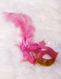 Masquerade mask with feather Stock Image