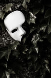 Masquerade - Phantom of the Opera Mask. On Ivy Wall Stock Photography