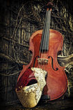 Masquerade - Phantom of the Opera Mask with Violin and Roman Col Stock Images