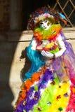 Masquerader бабочки радуги Стоковое Изображение
