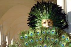 Masquerader павлина Стоковое Изображение