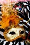 Masques lumineux de mascarade sur la rétro présidence Photos libres de droits