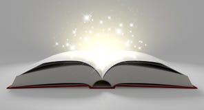 Masquez le livre magique paginé illustration libre de droits
