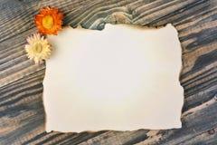 Masquez le papier brûlé bordé Photo stock