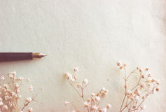 Masquez le papier et le stylo-plume âgés Image stock