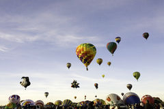 Mass Ascention at Albuquerque Balloon Fiesta Royalty Free Stock Image