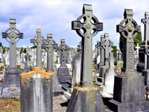 A Mass of Celtic Crosses in a Dublin Cemetery royalty free stock photos