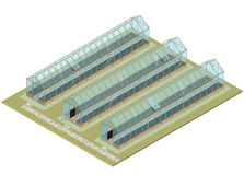 Mass farm. Isometric greenhouse with glass walls, foundations, gable roof. Isometric greenhouse with glass walls, foundations, gable roof, garden bed. Mass farm Royalty Free Stock Images
