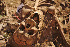 Mass grave of the Spanish Civil War (1936) Royalty Free Stock Photo